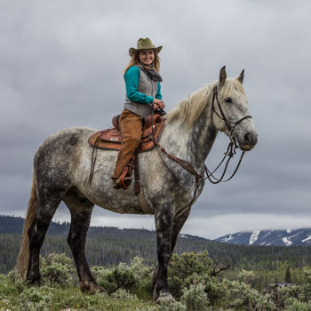 Rocky Mountain Steller